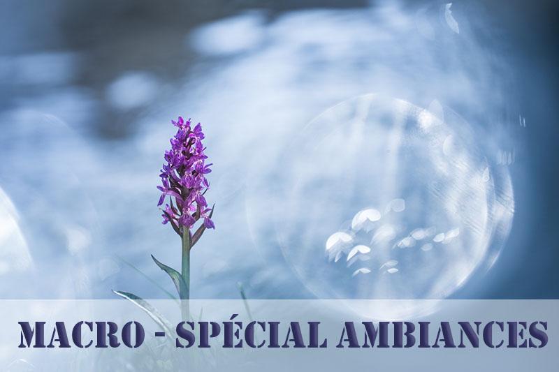"""Macro """"spécial ambiances"""""""